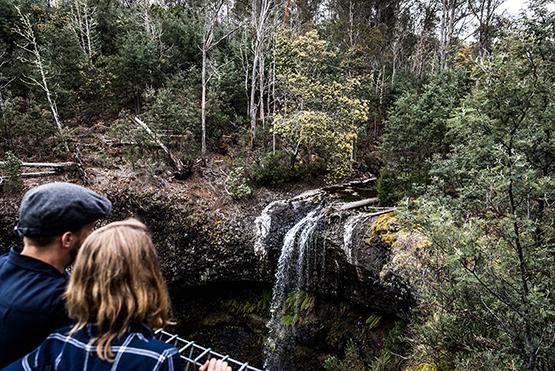 Tarraleah Falls Track